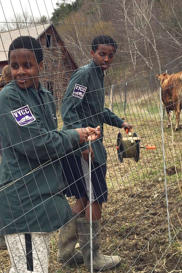 Mowtes and Hassan, Winooski High School students, learn how to install electric fencing for livestock on the Farm at VYCC.