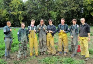 Crew after carrot harvest