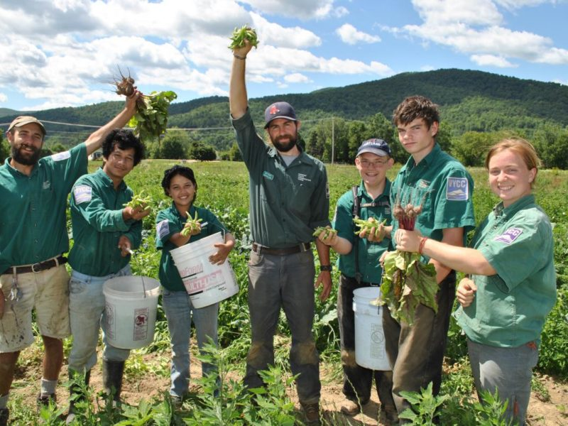 PRESS RELEASE: VYCC'S FOOD AND FARM PROGRAM NATIONALLY RECOGNIZED FOR TOP YOUTH CORPS PROJECT OF THE YEAR
