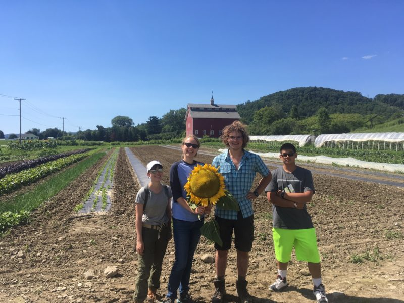 Growing our Future – Venture Semester with the Farm at VYCC