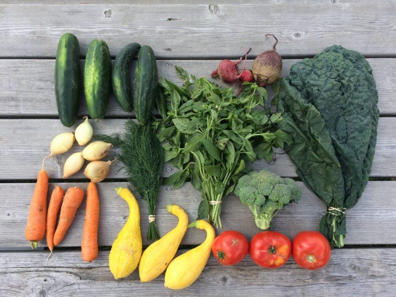Purchase a CSA That is More Than Vegetables