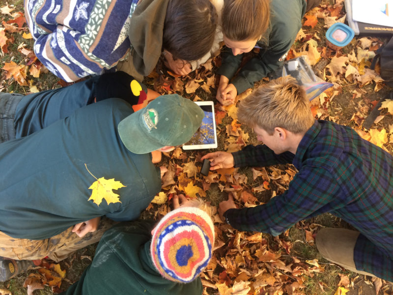 Apply for our Fall AmeriCorps Conservation Crews