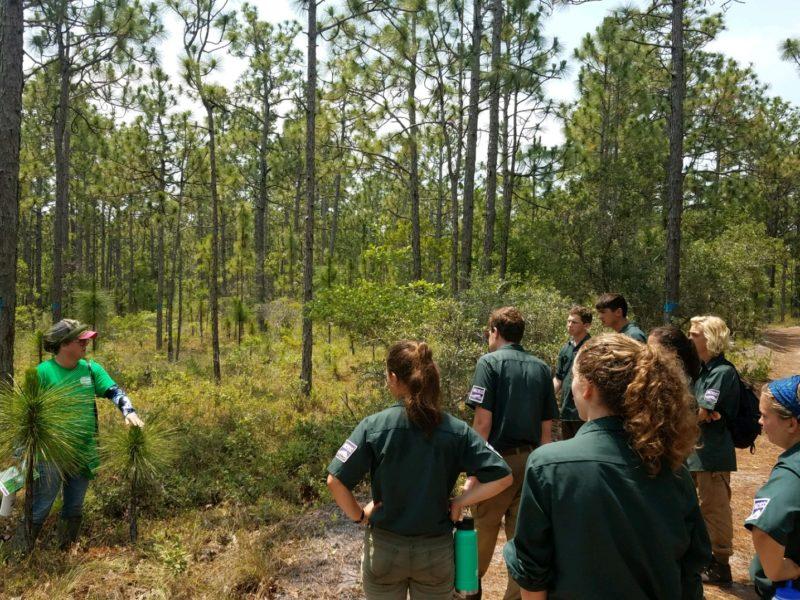 Teens work on Brunswick Nature Park