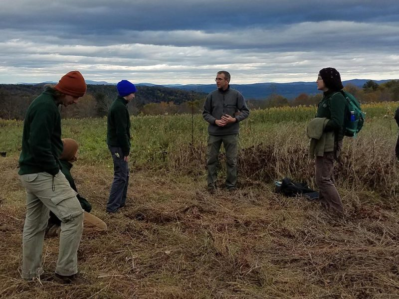 Vermont Youth Conservation Corps Planted Trees at State's Newest WMA